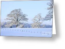 Oak In Snow Greeting Card