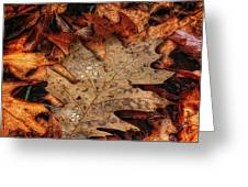 Oak Leaf 1 Greeting Card