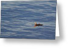 Oak Leaf Floating Greeting Card