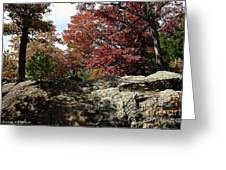 Oak Rock Greeting Card