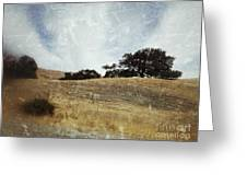 Oak Trees In A California Landscape Greeting Card