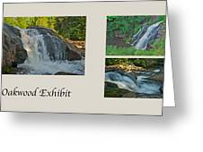 Oakwood Exhibit Greeting Card