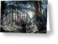 Oasis At Death Valley Greeting Card