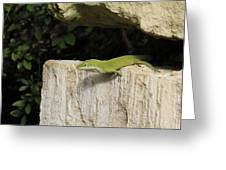 Observation Post Greeting Card