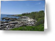Ocean Beach Vancouver Island Greeting Card