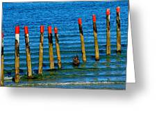 Ocean Eleven Greeting Card