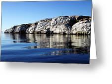 Ocean Sanctuary Greeting Card