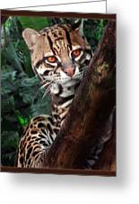 Ocelot Lookout Greeting Card