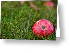 October Apple Greeting Card