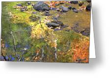 October Colors Reflected Greeting Card