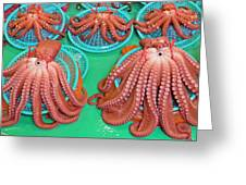 Octopus Attractively Arranged Greeting Card