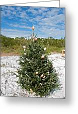 Oh Christmas Tree Florida Style Greeting Card