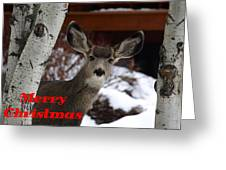Oh Deer Merry Christmas Greeting Card