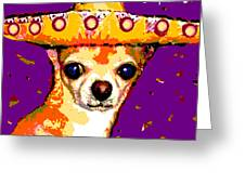 Party Chihuahua Greeting Card