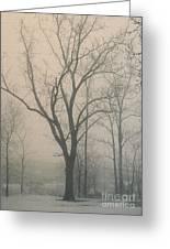 Ohio Winter Solitude Greeting Card