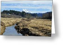 Ohop Valley View Of Rainier Greeting Card