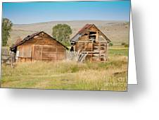 Old Building Woodruff Utah Greeting Card