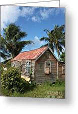 Old Chattel House Greeting Card by Barbara Marcus