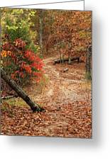 Old Country Road In Shannon County Greeting Card