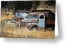 Old Farm Trucks Greeting Card
