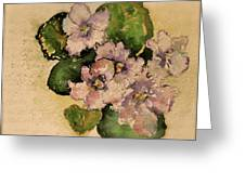 Old-fashioned African Violets Greeting Card