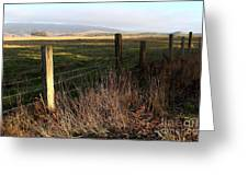 Old Fence And Landscape At Point Reyes California . 7d9968 Greeting Card
