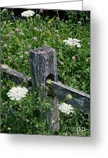 Old Fence And Wildflowers Greeting Card