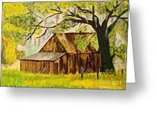 Old Florida Farm Shed Greeting Card by Bill Hubbard