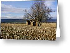 Old Hut Isolated In A Field. Auvergne. France Greeting Card by Bernard Jaubert