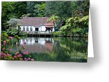 Old Lake With An Old Hut Greeting Card