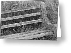 Old Overgrown Bench Greeting Card