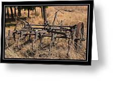 Old Plough Greeting Card by Miguel Capelo