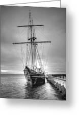 Old Ship Greeting Card