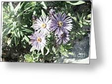 Old Style Flower 7 Greeting Card