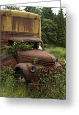 Old Truck In Rain Forest  Greeting Card