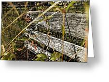 Old Weathered Gate Photoart II Greeting Card
