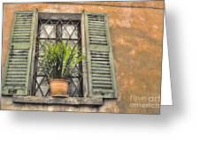 Old Window And A Green Plant Greeting Card