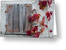 Old Window With Red Leaves Greeting Card