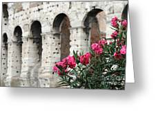 Oleander And Colosseum Greeting Card