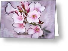 Oleander Blossoms Greeting Card