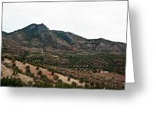 Olive Oil Mountain Greeting Card