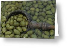 Olives Being Processed In Provence Greeting Card