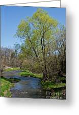 On The Banks Of Spring Greeting Card