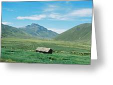 On The Road In Peru Greeting Card