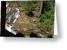 On The Rocks Glen Alpine Creek And Falls Greeting Card