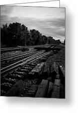 On The Tracks Greeting Card