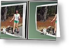 On The Trail - Gently Cross Your Eyes And Focus On The Middle Image That Appears Greeting Card