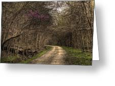 On This Trail Greeting Card