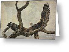 On Wings High Greeting Card