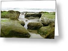 Ona Beach Greeting Card